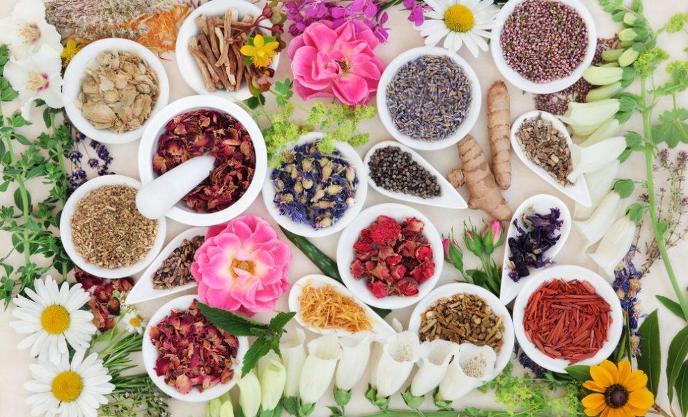 Подготовка организма к Новому году: заботимся о кишечнике и печени