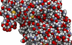 Аминокислоты – чьи мономеры?