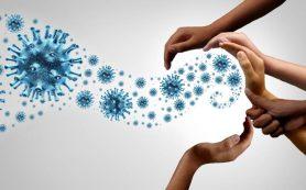 Иммунитет к коронавирусу может сохраняться дольше шести месяцев