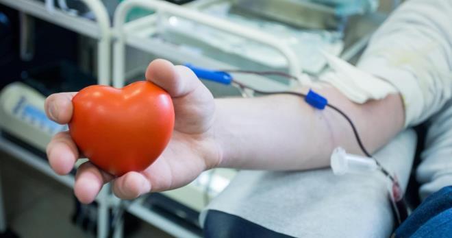 Донорство крови – особенности и значение процедуры