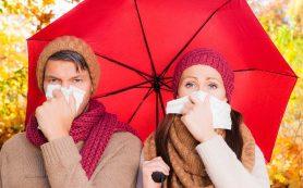 Осень пора болезней и ослабленного иммунитета